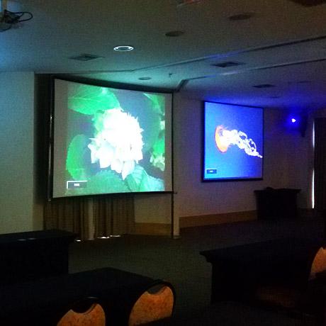 Equipamentos de som, luz, telões, painéis e projetores para eventos